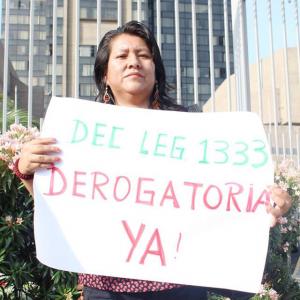 Decreto Leg 1333